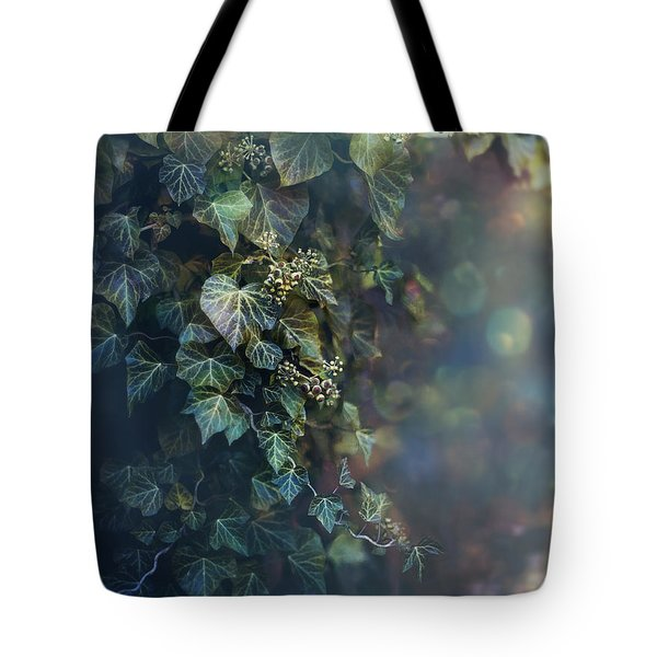 Twilight And Shadow Tote Bag