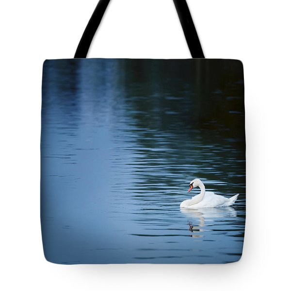 Twilight Drift Tote Bag