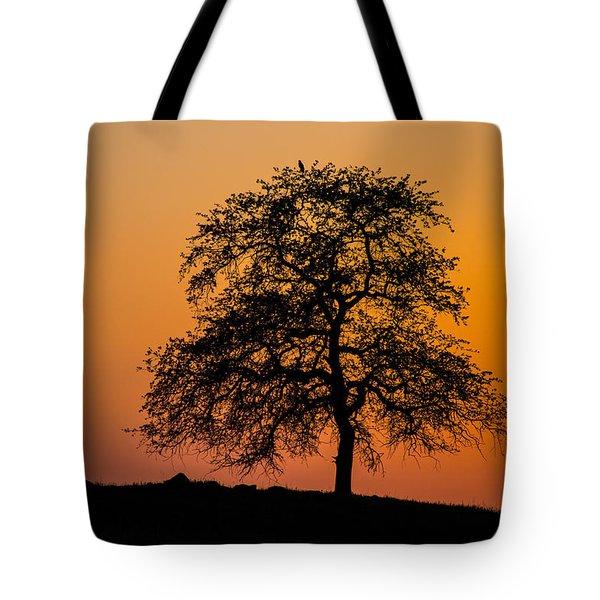 Twilight Hawking Tote Bag