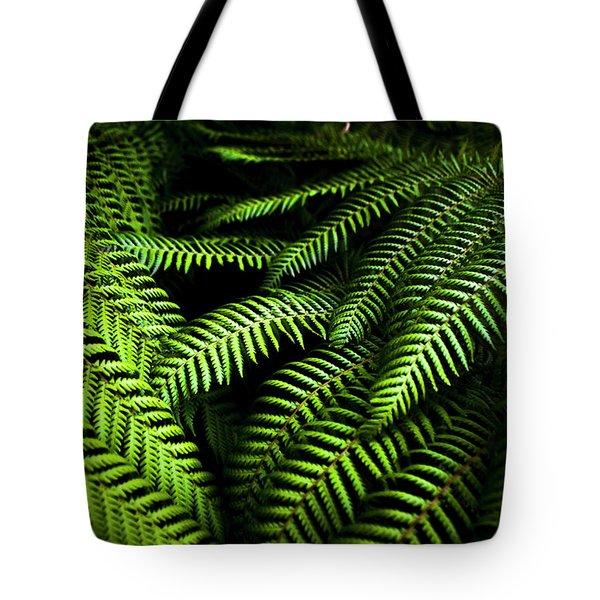 Twilight Rainforest Fern  Tote Bag
