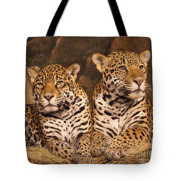Twin Cheetahs Tote Bag