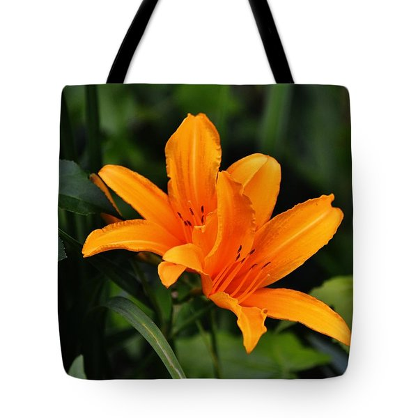 Twin Lillies Tote Bag
