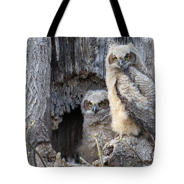 Twin Owls Tote Bag