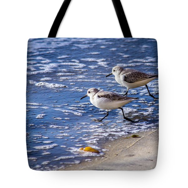 Twin Plovers Tote Bag