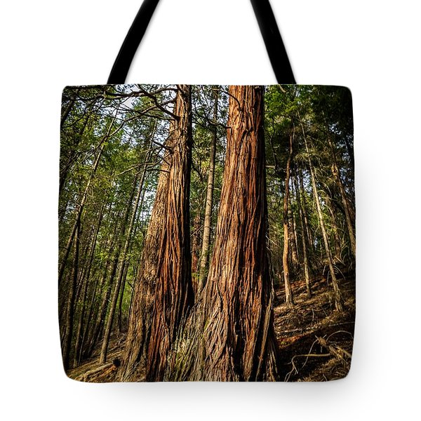 Twin Reds Tote Bag
