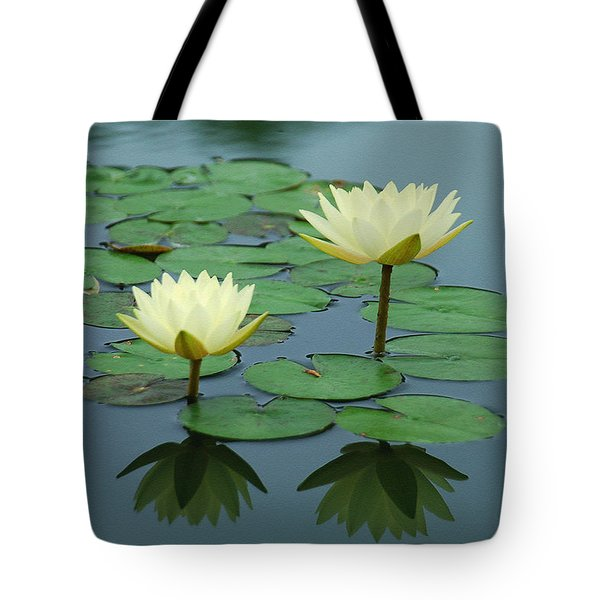 Twin Reflections Tote Bag