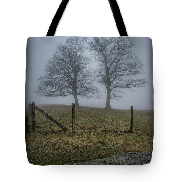 Twin Trees Late Fall Foggy Morning Tote Bag
