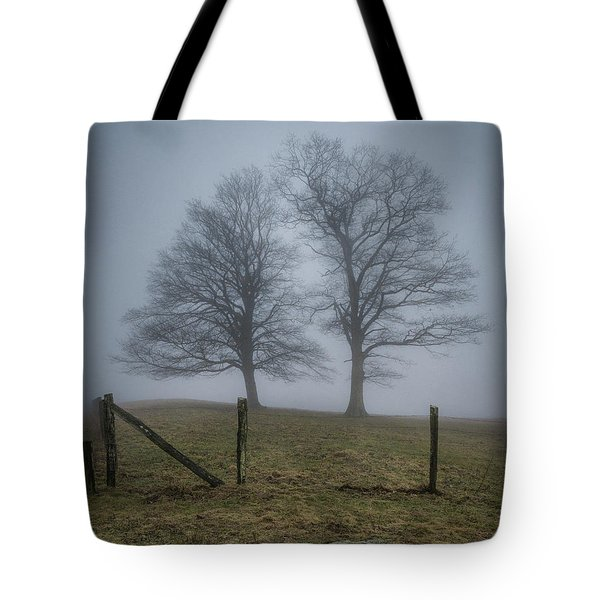 Twin Trees Late Fall Foggy Morning Tote Bag