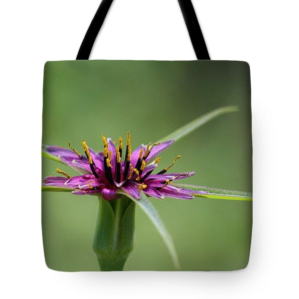 Tote Bag featuring the photograph Twinkle Twinkle by Richard Patmore