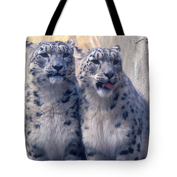 Twins Tote Bag by Greg Slocum