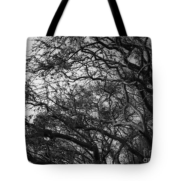 Twirling Branches Tote Bag