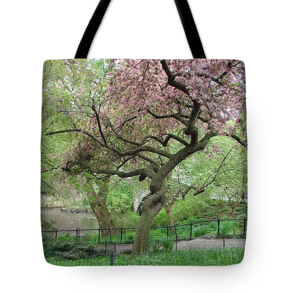Twisted Cherry Tree In Central Park Tote Bag by Margaret Bobb