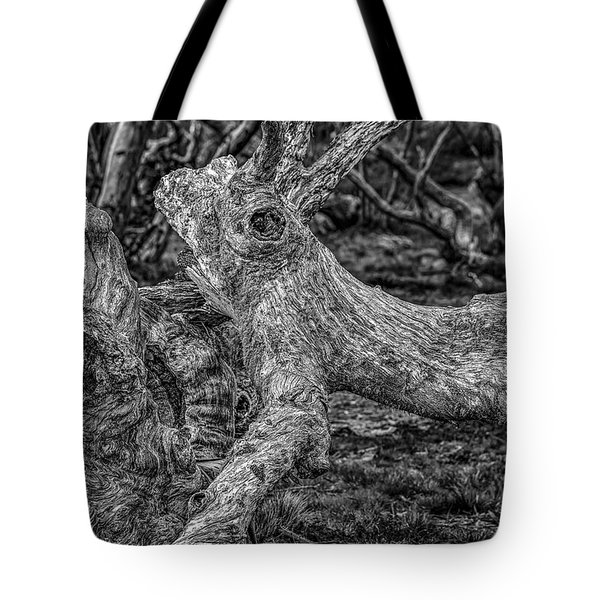 Twisted Tote Bag by Mark Lucey