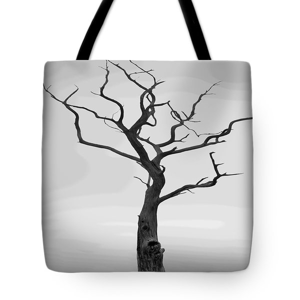 Twisted Tote Bag by Mike McGlothlen