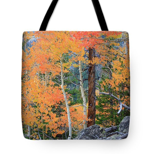 Twisted Pine Tote Bag