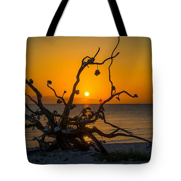 Tote Bag featuring the photograph Twisted Sunset by Phil Abrams