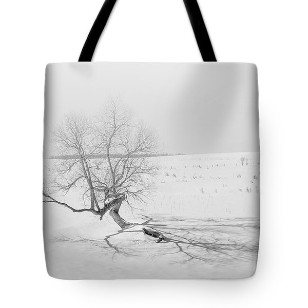 Tote Bag featuring the photograph Twisted Tree by Dan Traun