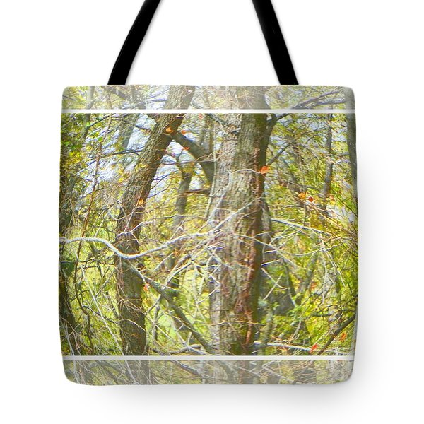 Twisted Trees Tote Bag by Shirley Moravec
