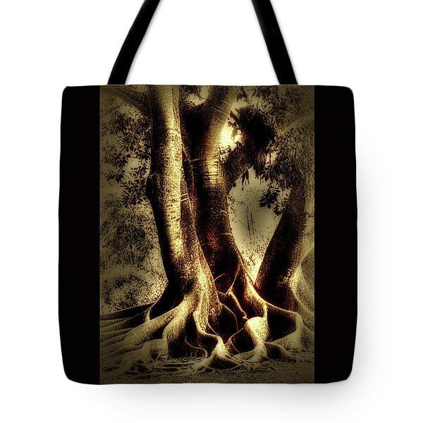 Tote Bag featuring the photograph Twisted Trees by Tom Prendergast
