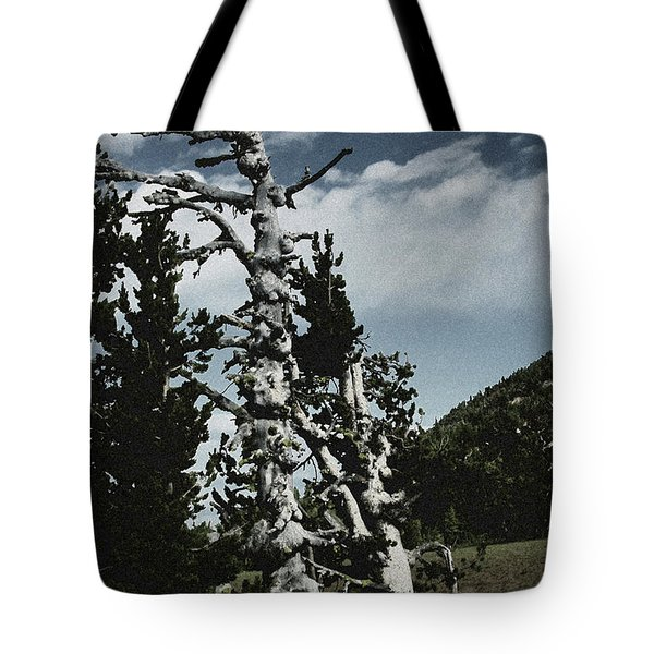 Twisted Whitebark Pine Tree - Crater Lake - Oregon Tote Bag by Christine Till