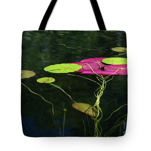 Tote Bag featuring the photograph Twister by Michelle Wiarda