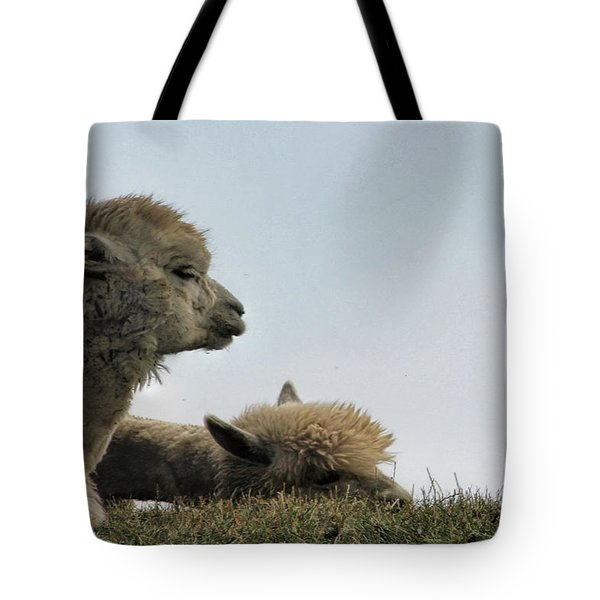 Two Alpaca Tote Bag