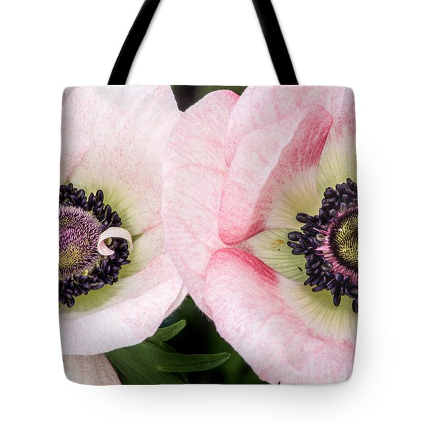 Two Anemones Tote Bag