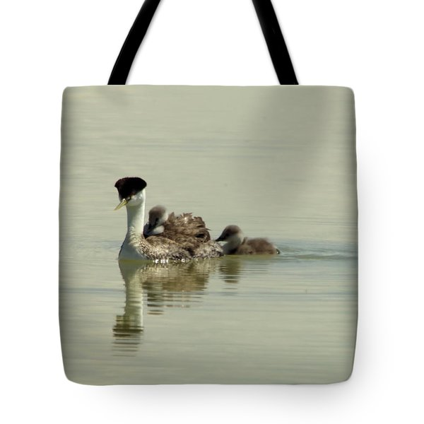 Mother Grebe And Her Babies Tote Bag