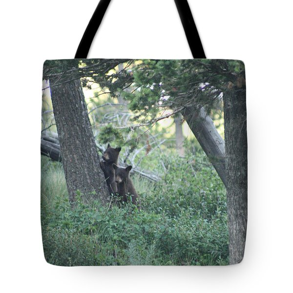Two Bear Cubs Tote Bag
