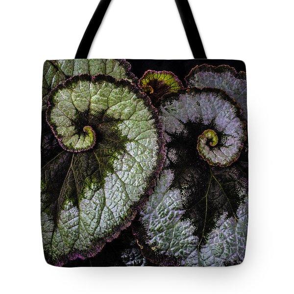 Two Begonia Leaves Tote Bag