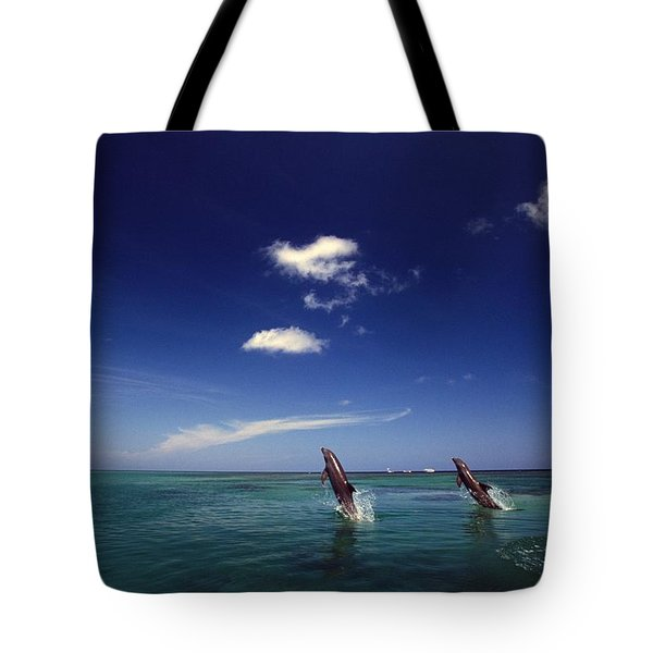 Two Bottlenose Dolphins Dancing Across Tote Bag by Natural Selection Craig Tuttle