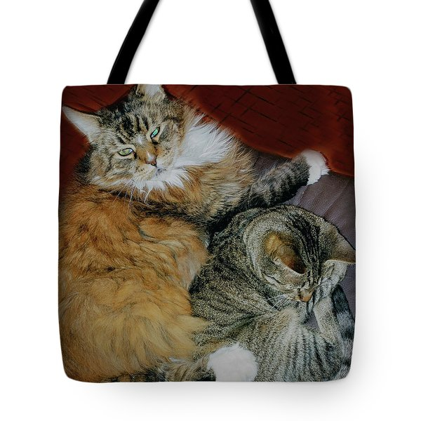 Tote Bag featuring the photograph Two Brothers by Roger Bester