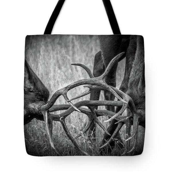 Two Bull Elk Sparring Tote Bag