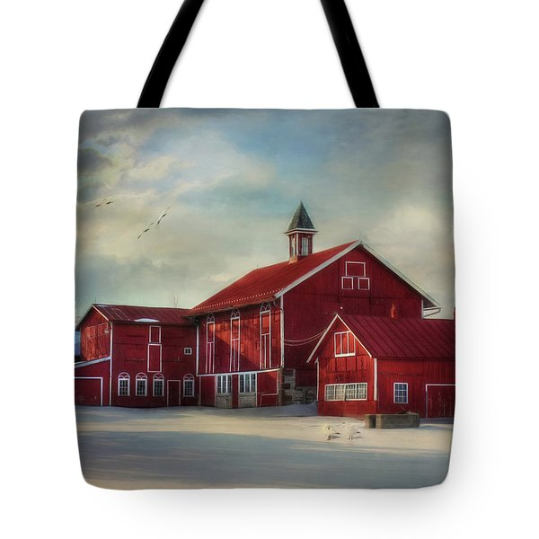 Two By Two Tote Bag by Lori Deiter