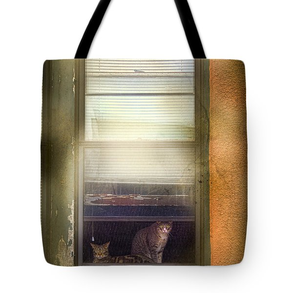 Two Cats Of Elm Tote Bag