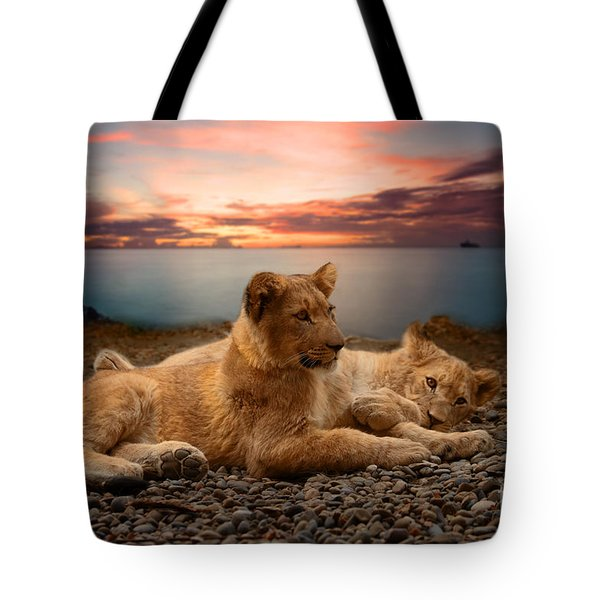 Two Tote Bag by Christine Sponchia