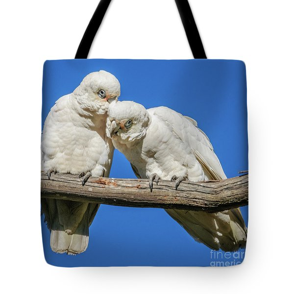 Two Corellas Tote Bag