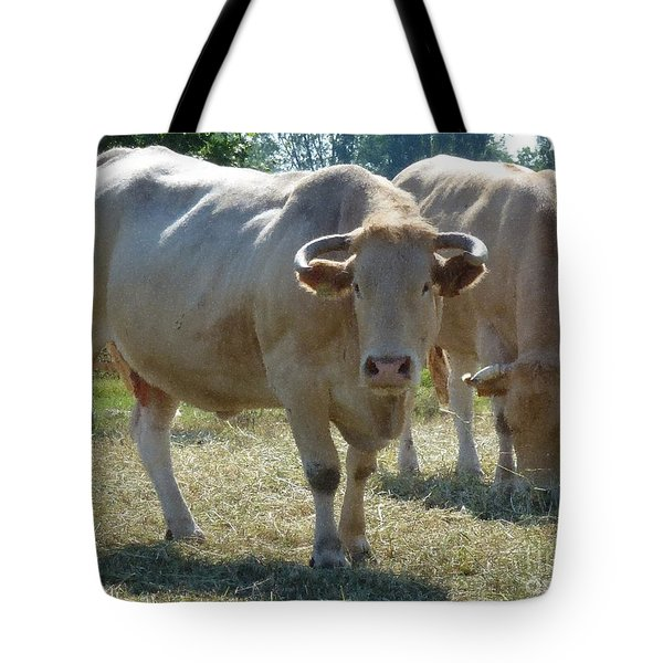 Tote Bag featuring the photograph Two Cows by Jean Bernard Roussilhe