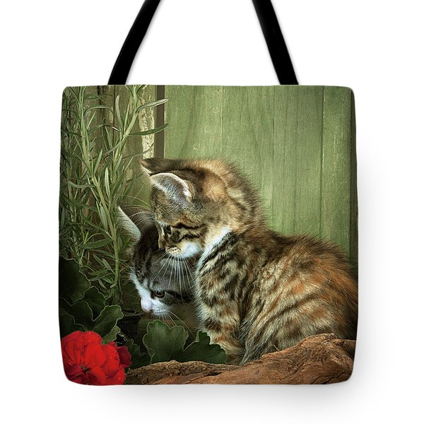 Two Cute Kittens Tote Bag