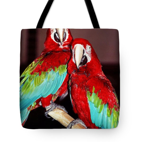 Two Friends ... Tote Bag