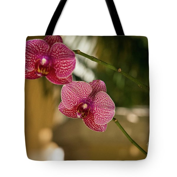 Two Friends Tote Bag by Sandy Molinaro