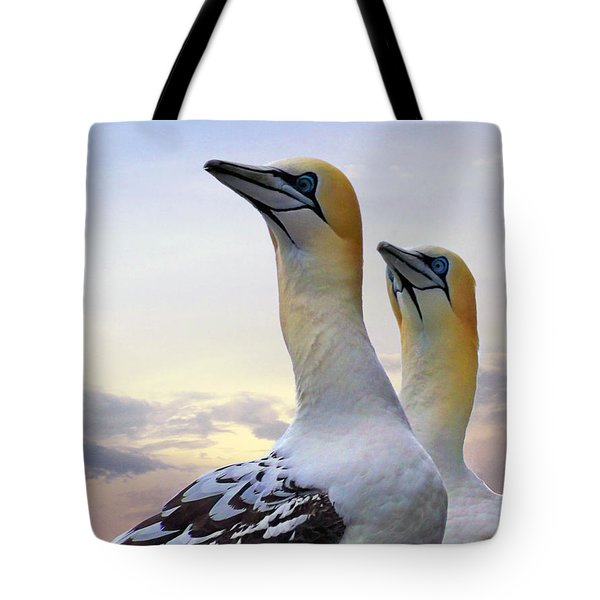 Two Gannets Tote Bag
