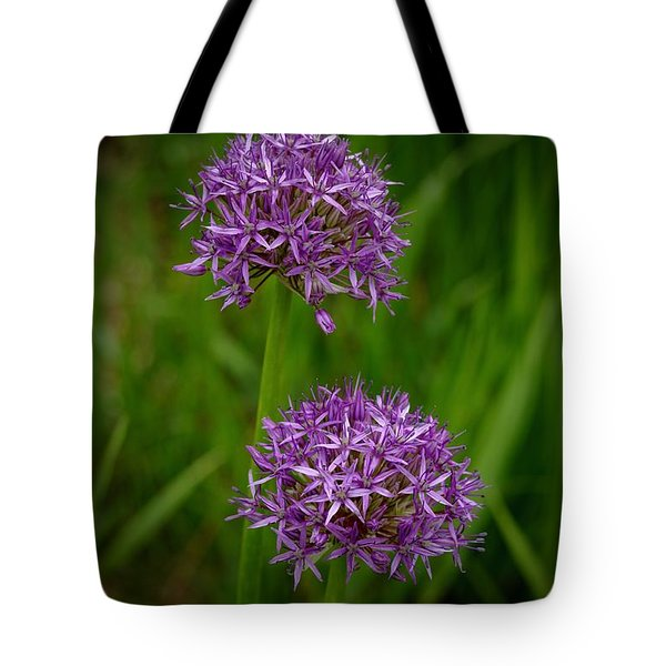 Two Globes Tote Bag