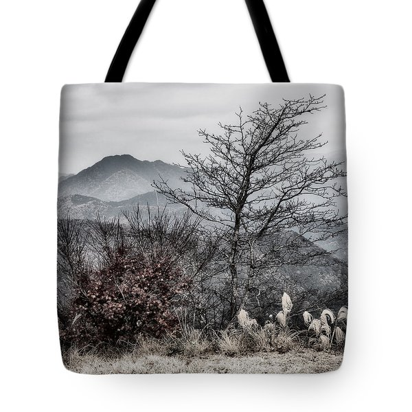 Two Tote Bag