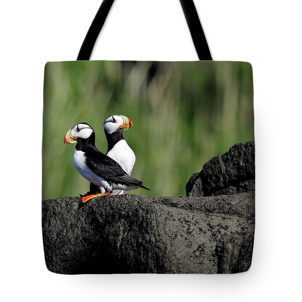 Two Horned Puffins Tote Bag