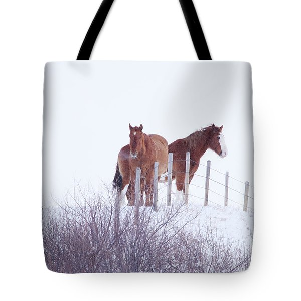 Two Horses In The Snow Tote Bag