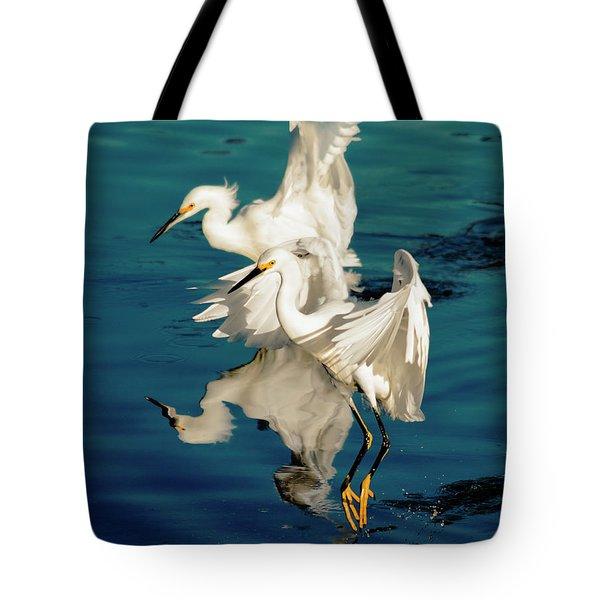 Two In Tandem Tote Bag