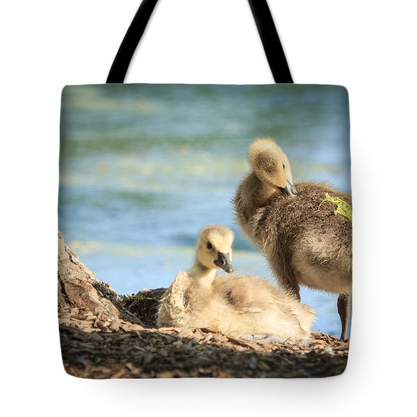 Two Little Goslings Tote Bag