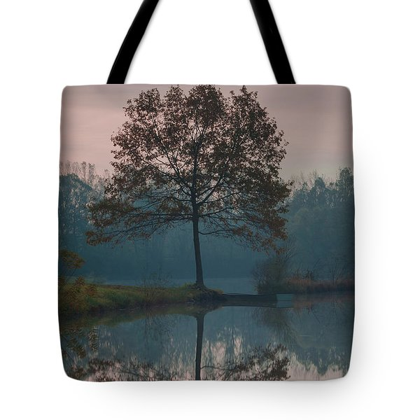Tote Bag featuring the photograph Two Loners by Davor Zerjav