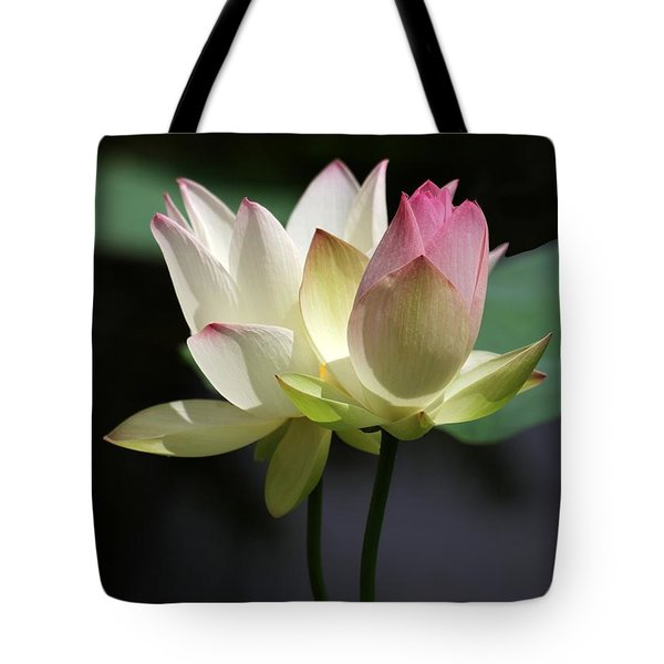 Tote Bag featuring the photograph Two Lotus Flowers by Sabrina L Ryan